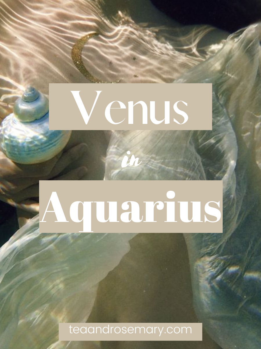 Venus In Aquarius In The Birth Chart