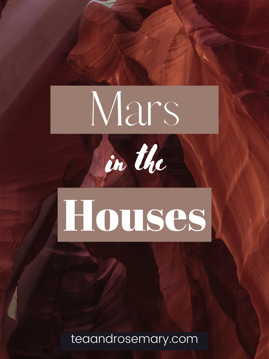 mars in the houses, mars in the 1st 2nd 3rd 4th 5th 6th 7th 8th 9th 10th 11th 12th house