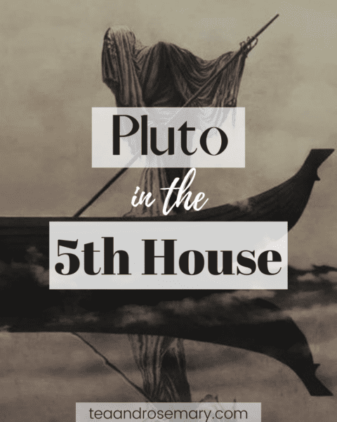 pluto in the 5th house