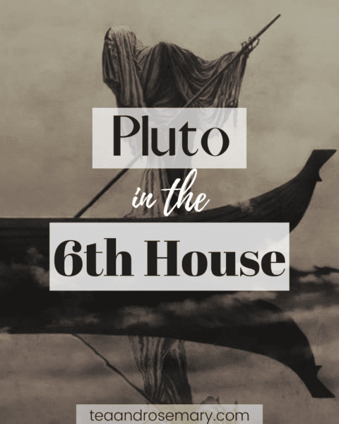 pluto in the 6th house