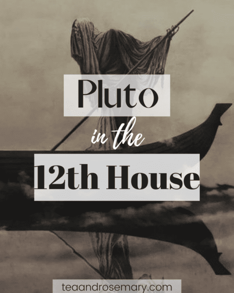 pluto in the 12th house