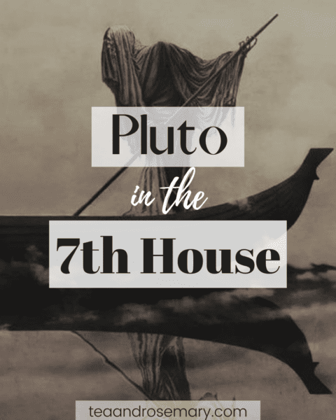 pluto in the 7th house